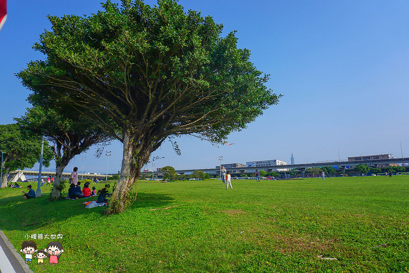 大佳河濱公園 010