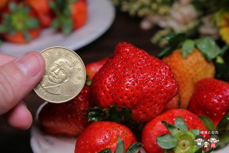 彰化草莓 009