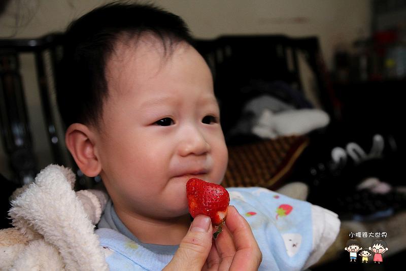 彰化草莓 016