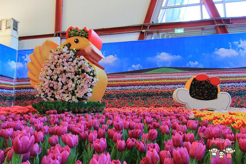 2017花在彰化溪州公園 039