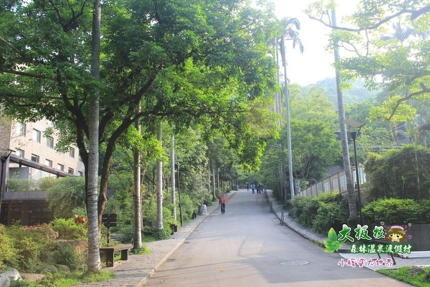 大板根森林溫泉渡假村 004.jpg