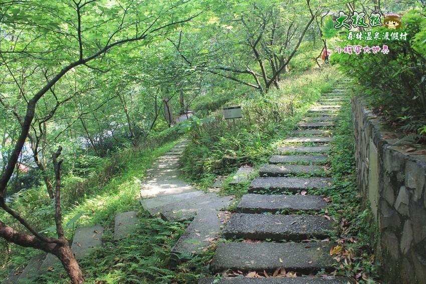 大板根森林溫泉渡假村 047.jpg