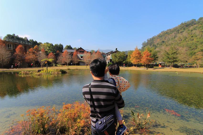 苗栗景點|南庄雲水渡假森林~湖畔、落羽松,如夢境超美的羽松湖倒影、馬卡龍小屋、足湯、浪漫花園,來到森林之旅吧!