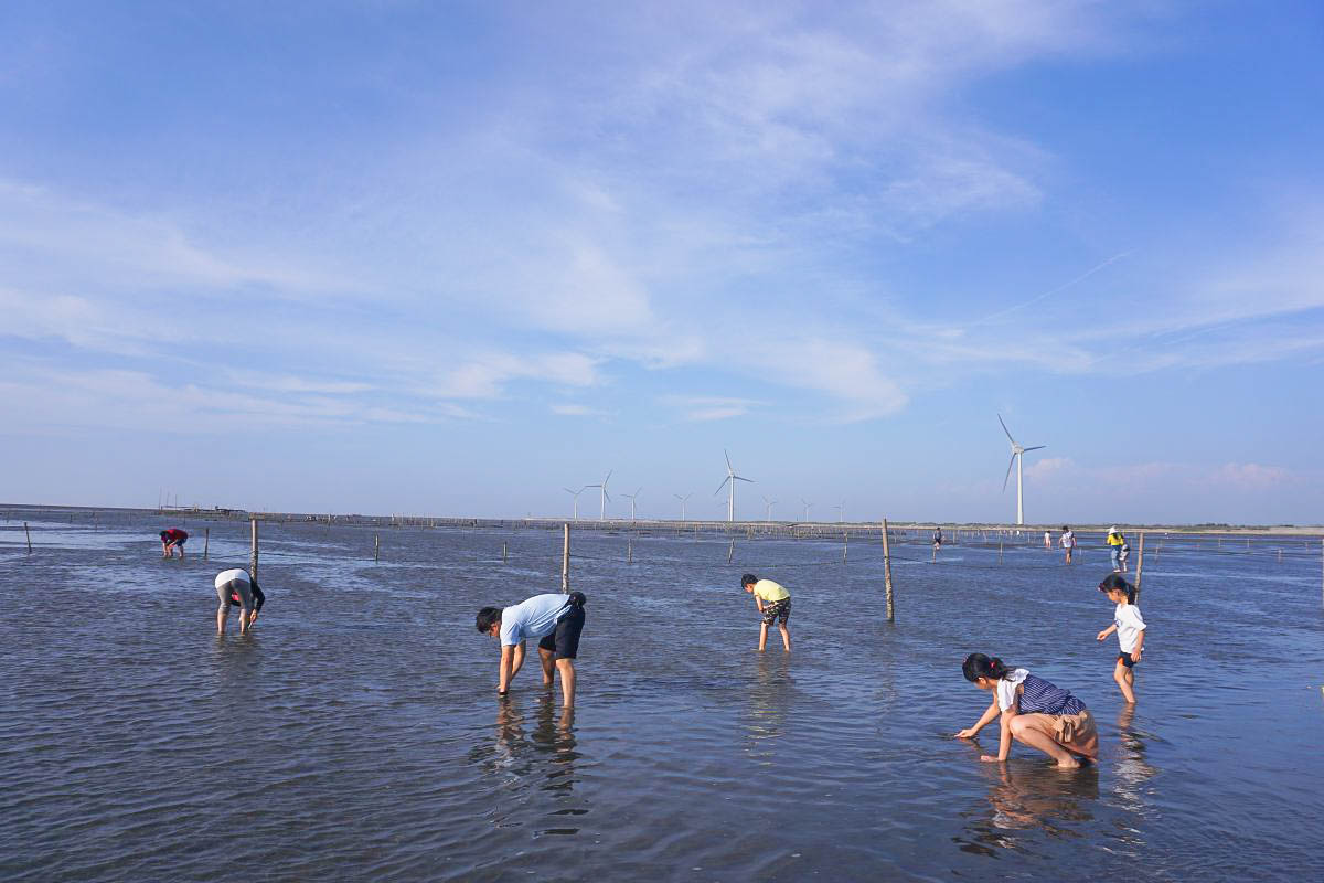 彰化玩水玩沙去!專人烤蚵烤蛤吃到飽~玩水玩沙一次到位~原來彰化海線這麼好玩!潮間帶抓螃蟹~摸蛤仔兼洗尿布~