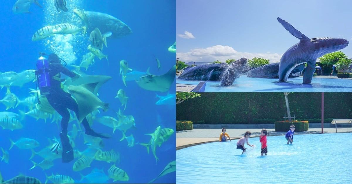 屏東親子景點|海生館(國立海洋生物博物館)|進入美麗海底隧道、戲水池、夜宿海生館、可愛的小白鯨小企鵝~巨藻林好震撼!和鯊魚一起夜宿~ @小腹婆大世界