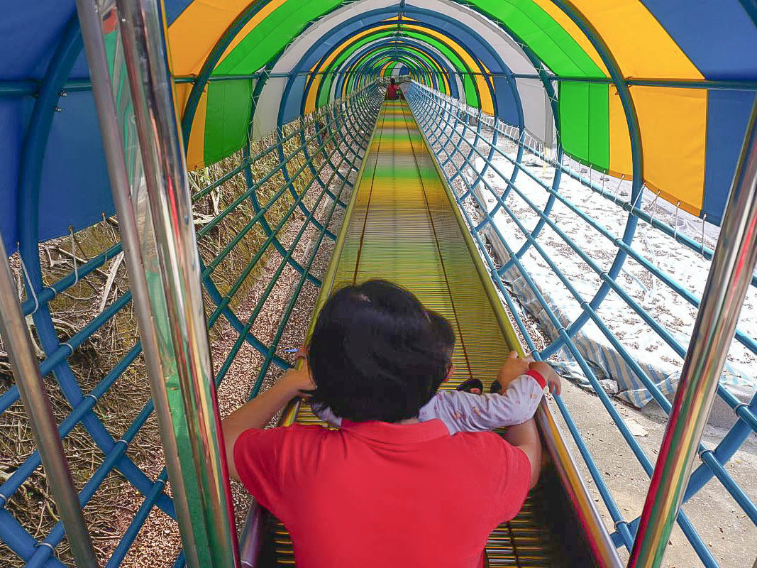 嘉義好好玩~全台最長溜滑梯80公尺一日遊四個景點:半山岩紫雲寺溜滑梯、德蘭日式庭園、檜意森活村、沉睡森林