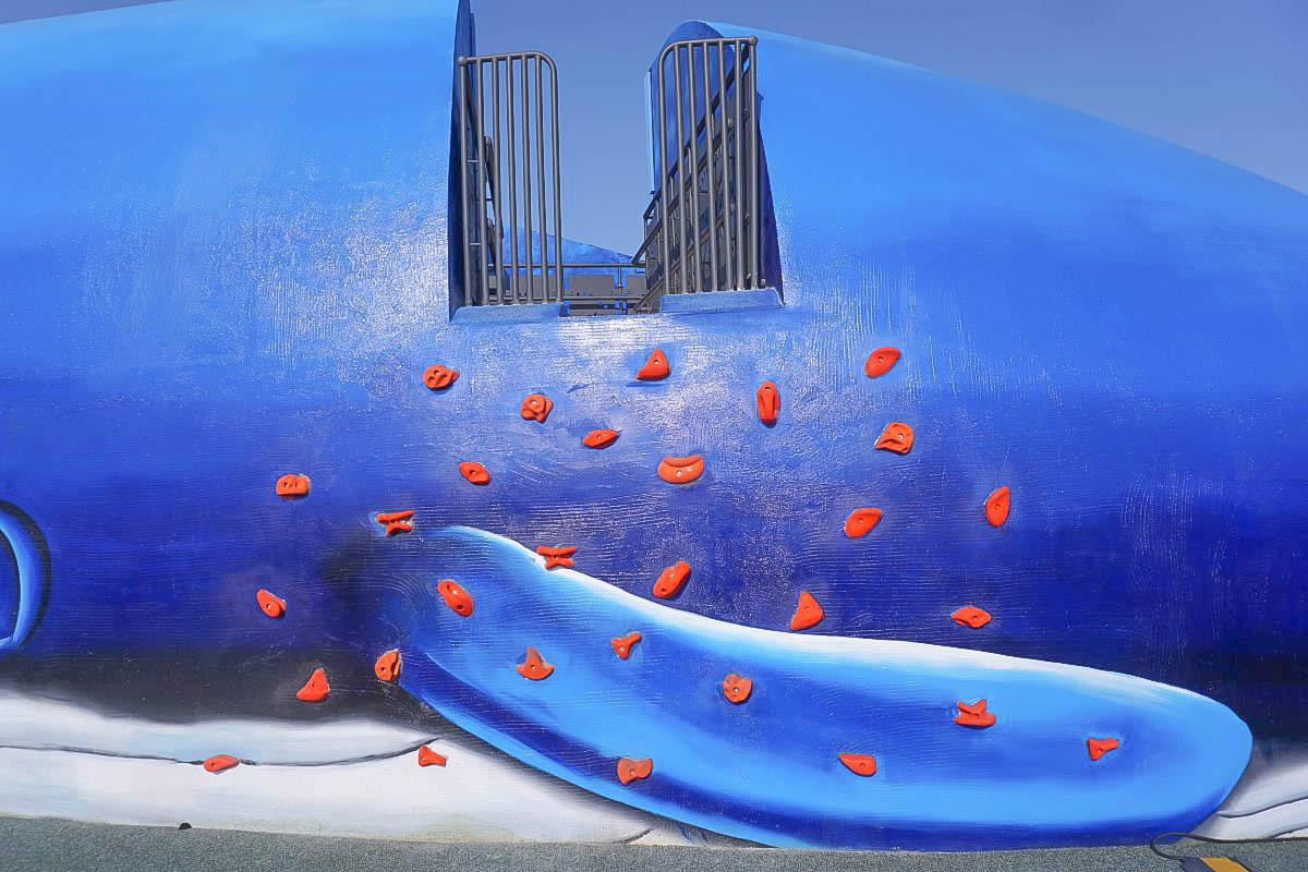 新北特色公園|八里鯨魚商港公園~全台首座鯨魚地景無障礙公園,滑石溜滑梯、盪鞦韆,適合野餐的公園,地址,交通