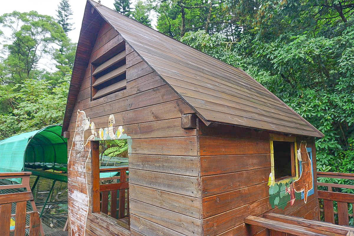 新竹親子景點》森林鳥花園:餵大嘴鳥、森林玻璃屋、超長彩虹溜滑梯、木屋溜滑梯、沙堆、戲水池、室內遊戲室、小火車,超級放電好玩