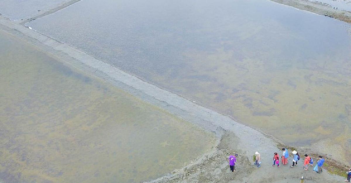 嘉義IG秘境~洲南鹽場|小摩西分海、走在鹽田中央(藍天、倒影、水池),變身小小鹽工的免費景點,小朋友玩翻了! @小腹婆大世界