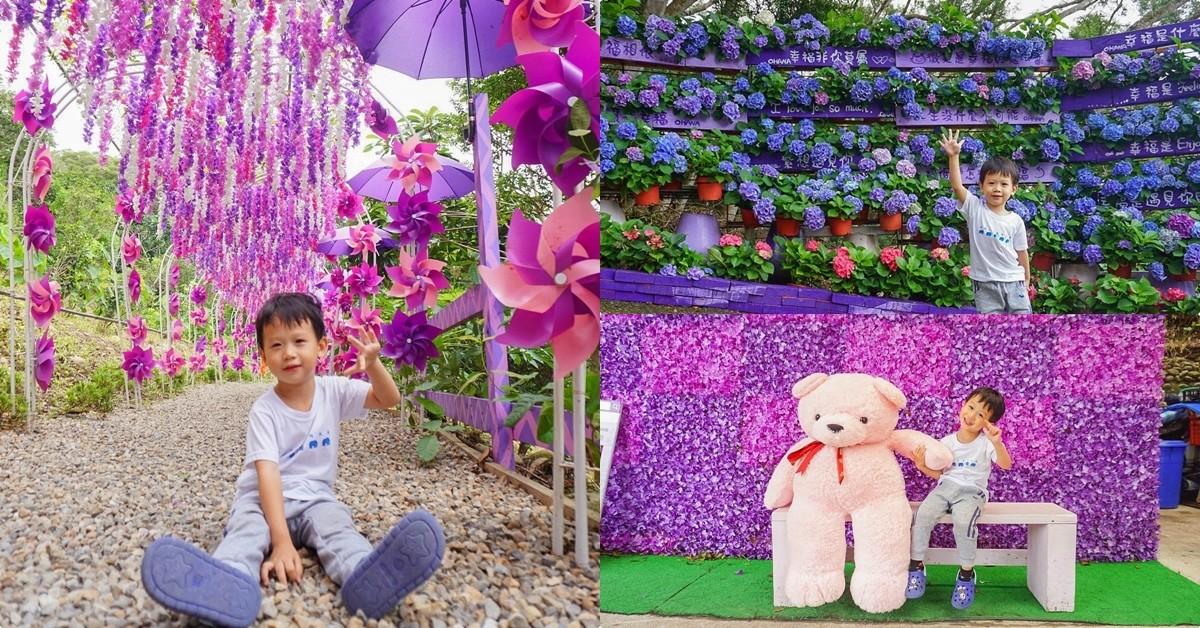 苗栗西湖景點》噢哈娜咖啡屋:一秒進入紫色童話世界!浪漫紫藤花徑.紫色繡球花.浪漫紫傘林,情侶約會出發~ @小腹婆大世界