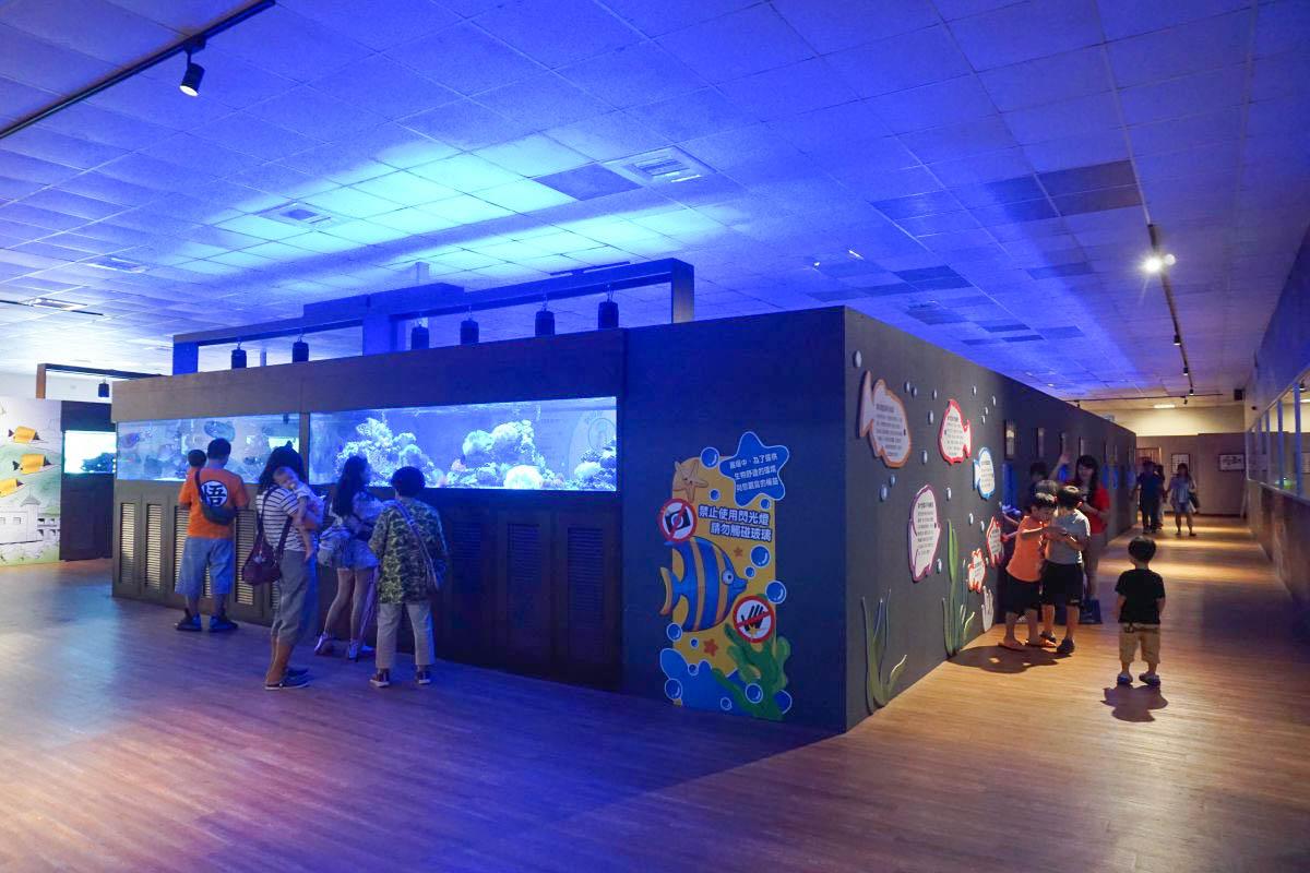 宜蘭礁溪景點|金車生技水產養殖研發中心:餵鯊魚好好玩、門票收費、室內遊戲區、必吃現煮甜蝦、好多魚魚~