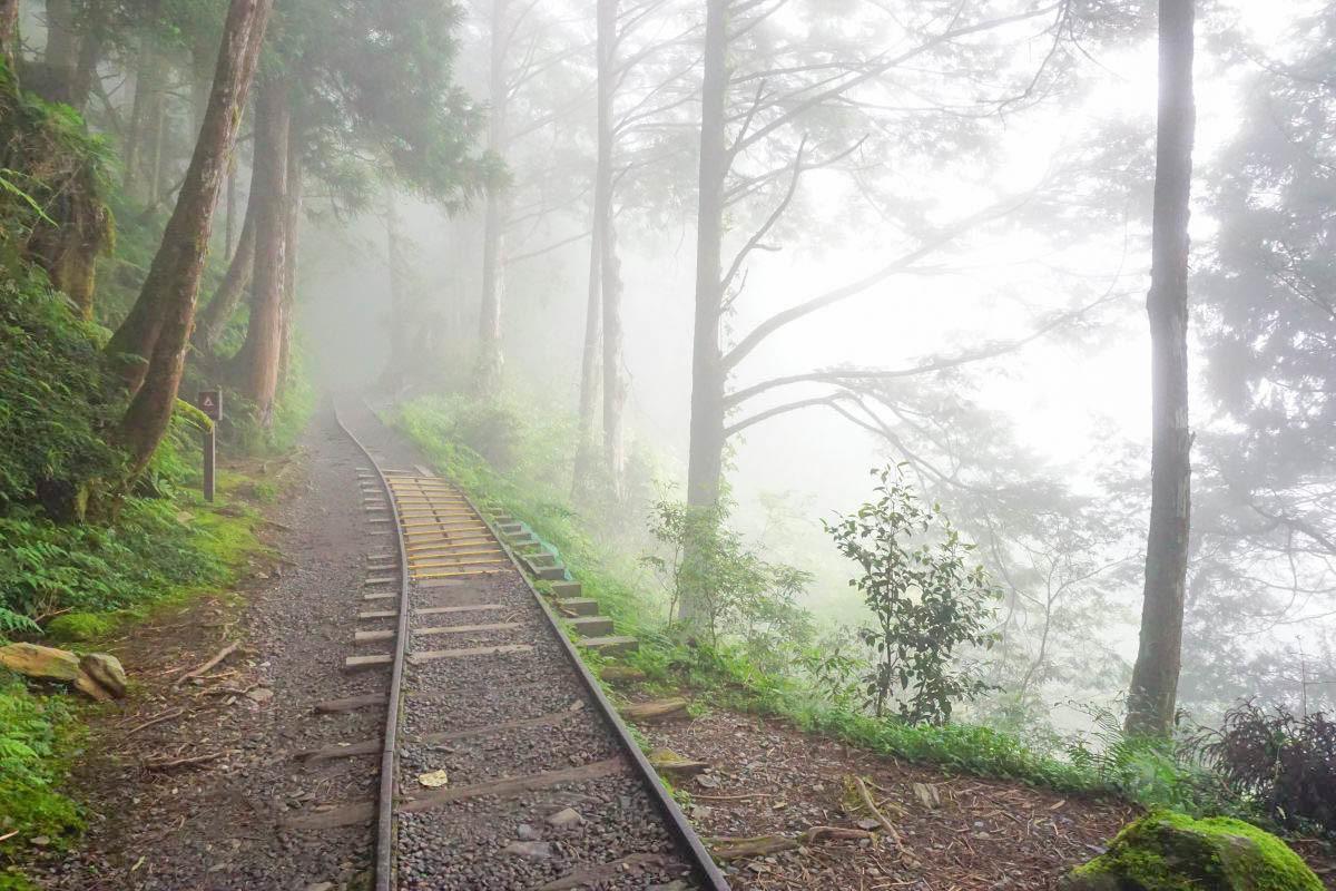 宜蘭太平山一日遊|森林蹦蹦車、復古日式車站、紅葉步道、全球最美森林小路見晴步道、鳩之澤煮蛋煮玉米超好吃 !