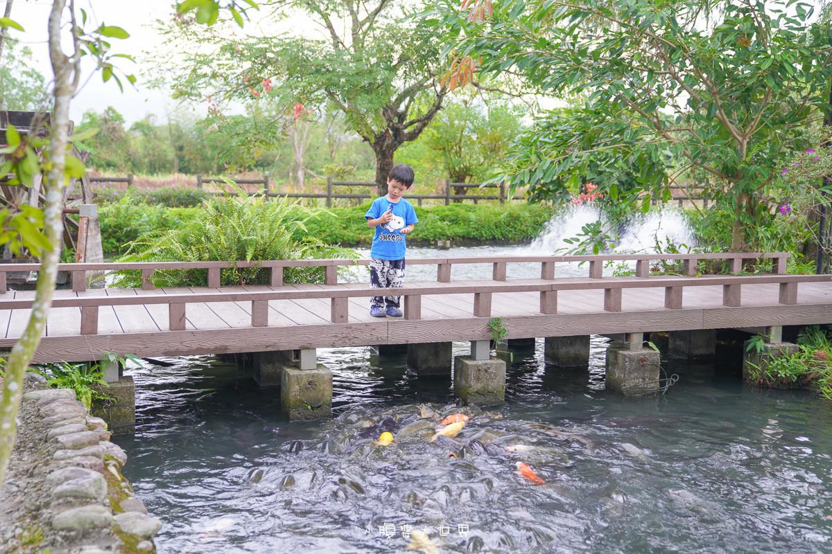 宜蘭景點《八甲休閒魚場:如詩如畫水上餐廳📍免門票~兒童小火車、餵魚餵個過癮,詩意盎然柳樹小徑,簡餐火鍋合菜一次滿足!