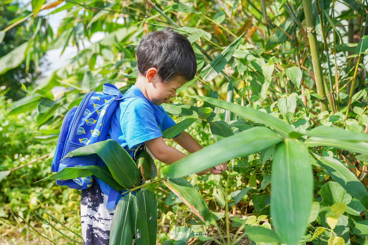 宜蘭景點》張媽媽有機竹筍園(預約制):一日小小農夫~採地瓜葉、竹筍葉、洗菜揀菜通通自己來,小朋友單車、盪鞦韆可以玩哦!
