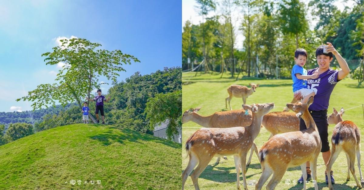即時熱門文章:宜蘭冬山景點》斑比山丘📍被山環抱的小鹿咖啡廳~台灣版小奈良餵梅花鹿吃紅蘿蔔,被小鹿們包圍餵食好緊張,超美環山小山丘~