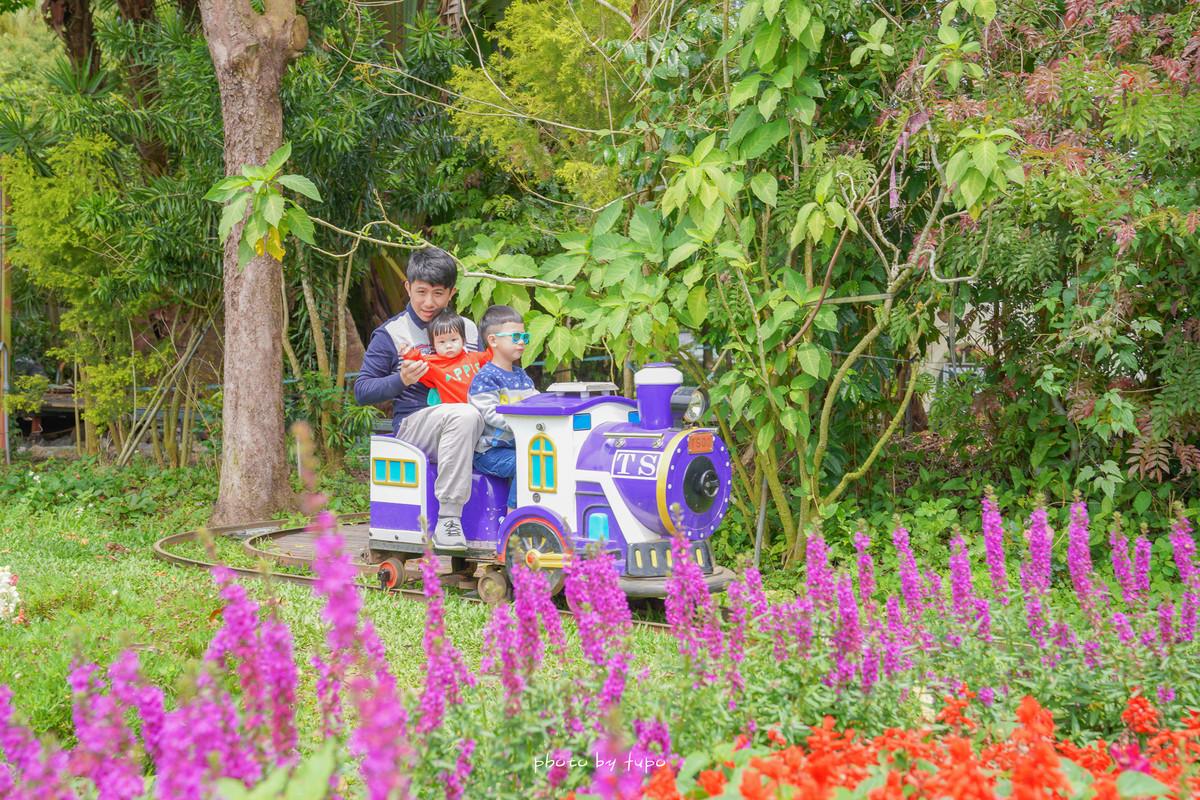 苗栗卓蘭景點》花露農場~繡球花季開跑,適合帶小朋友出門踏青的花卉農場,可以餵魚、搭森林小火車,還有可愛的貓頭鷹樹屋哦!