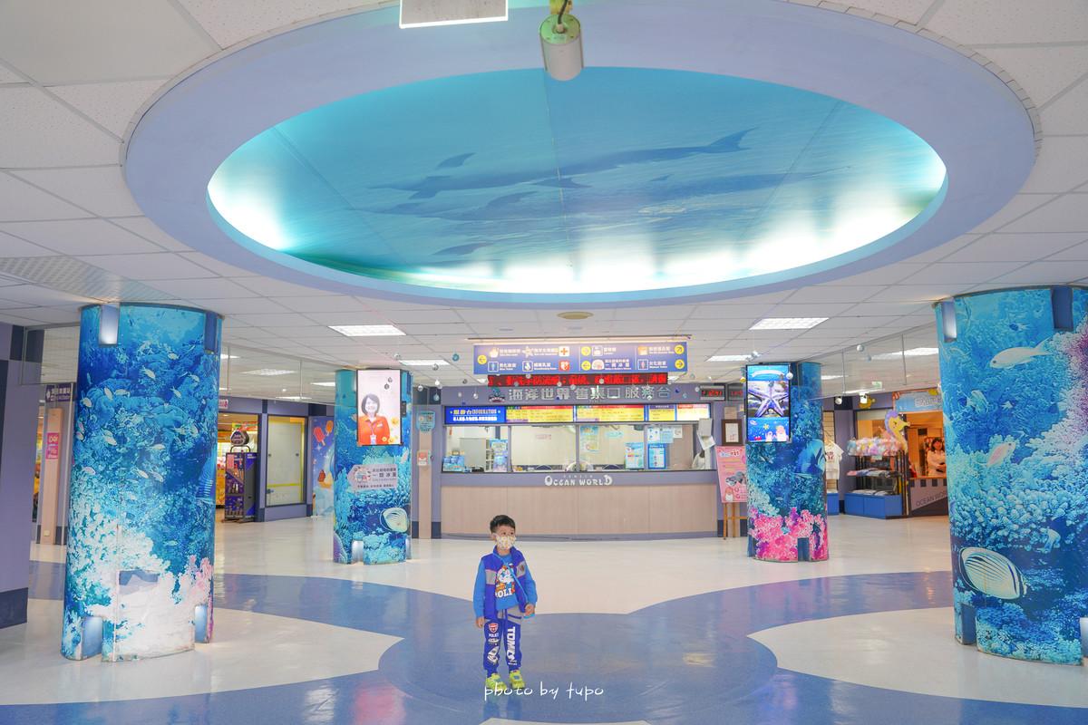 北海岸親子景點》野柳水族館一日遊!野柳海洋世界: 海豚親親、海洋劇場、海底隧道探險、生態池摸摸海星去