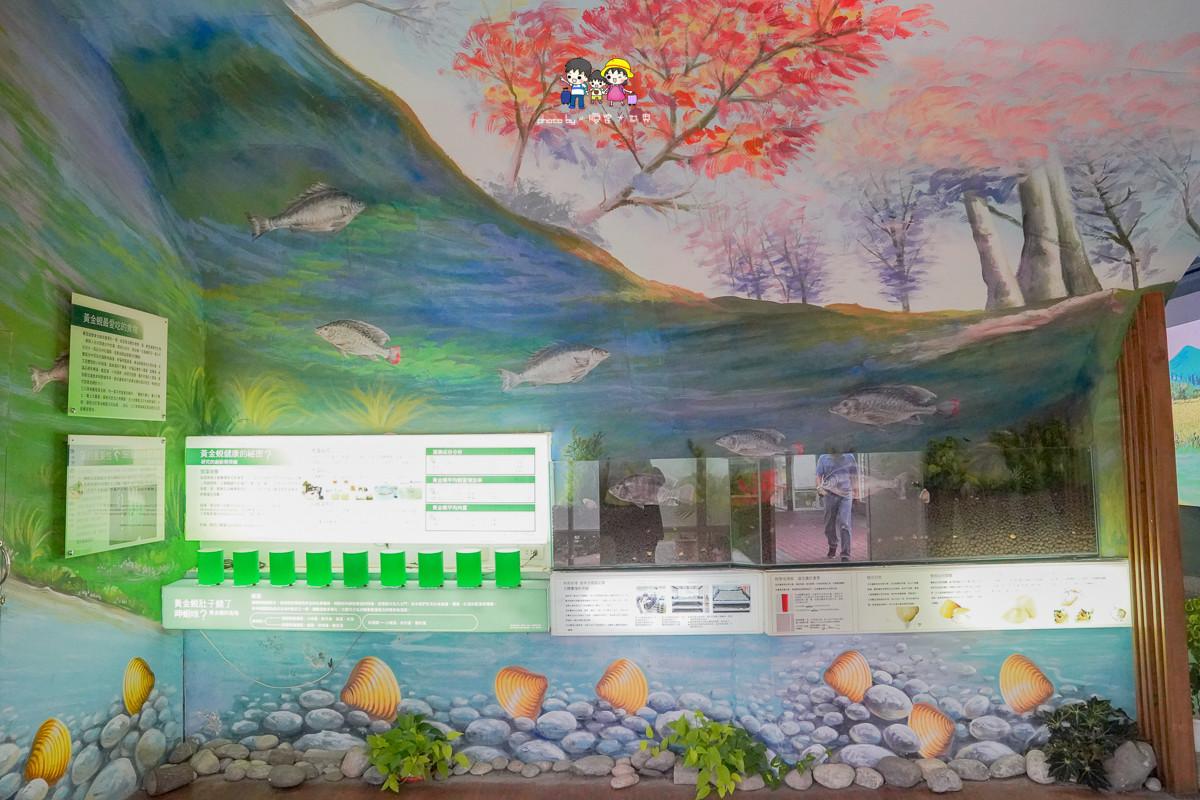 花蓮親子景點》立川漁場-黃金蜆的故鄉:摸蜆兼洗褲,餵魚,好特別的蜆冰淇淋,必買伴手禮推薦