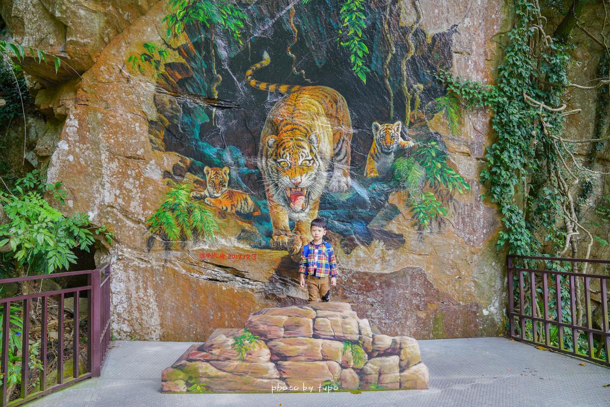 苗栗景點》隱身於山嵐裡的精靈王國,蘇維拉莊園!佔地約四萬八千坪:恐龍溜滑梯、魔鏡咖啡廳、觀景台,浪漫約會景點!