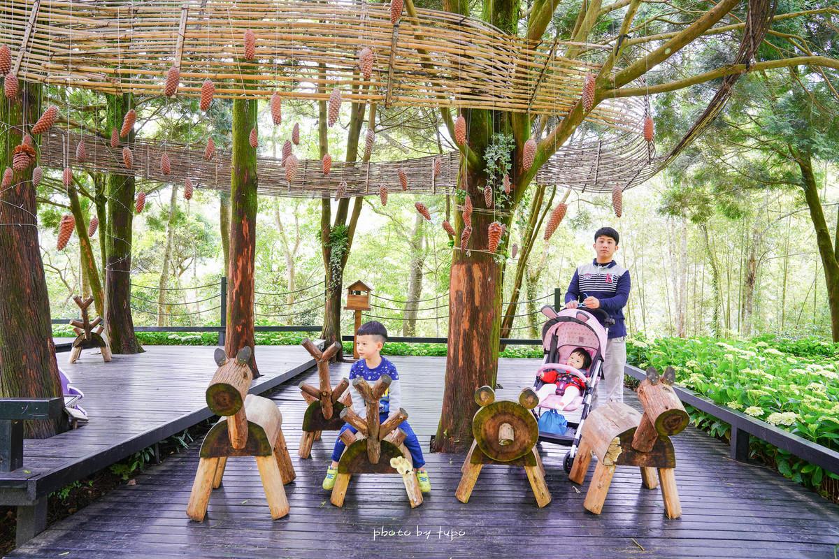 新竹景點|尖石薰衣草森林~森林系景點🌲繽紛繡球花季、薰衣草田、親子DIY、免準備野餐組合,適合全家親子情侶約會景觀餐廳~