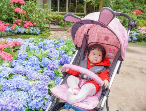 親子育兒好物分享~COSATTO WOOSH 2|超吸睛的兔兔推車,秒收款!又輕又好推~粉嫩粉嫩超級可愛!必買的十大原因!2020嬰兒推車推薦
