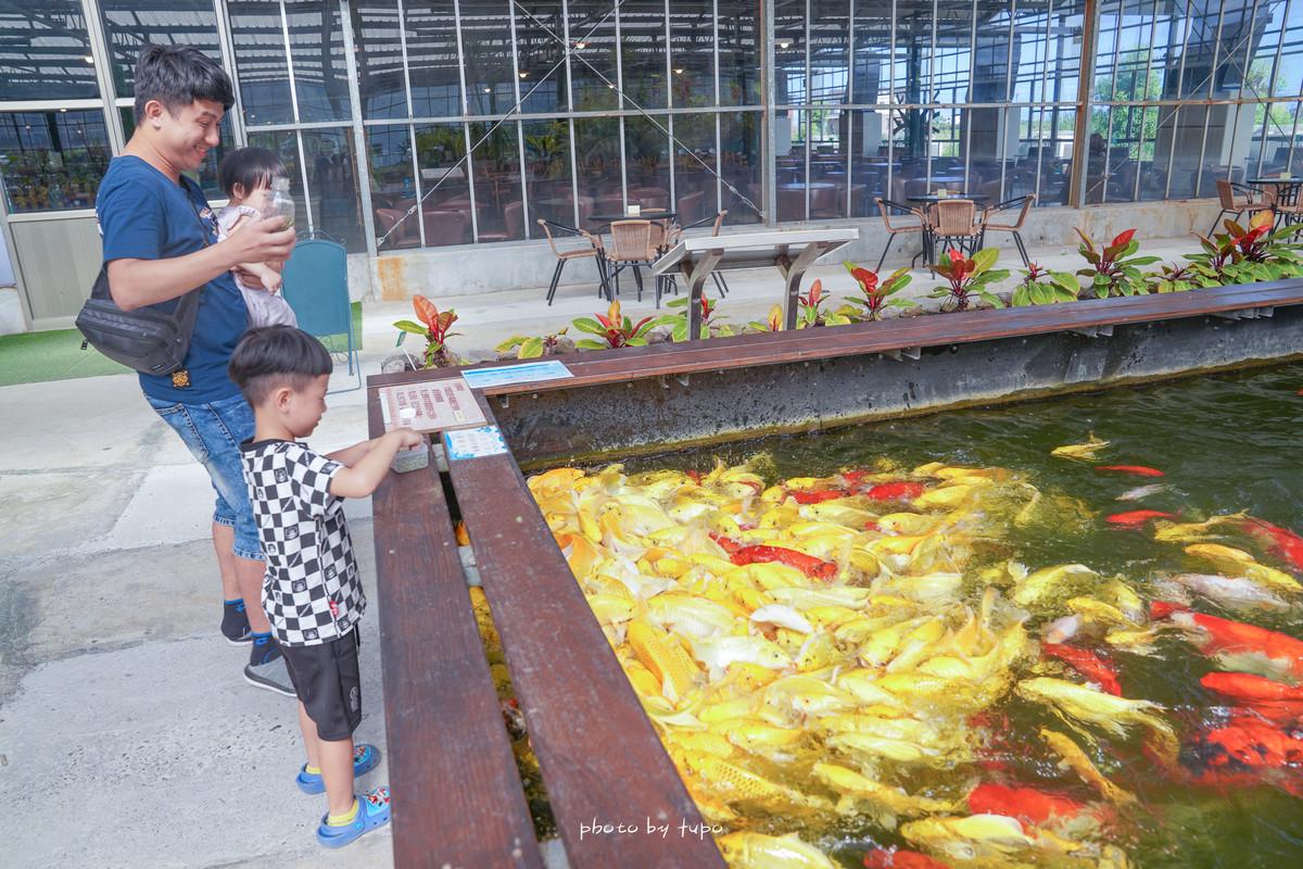 宜蘭新玩法 : 金車礁溪蘭花園 餵魟魚好好玩!(要簽危險聲明)、仙人掌沙洲、室內遊戲區,門票可折抵好拍又好玩~