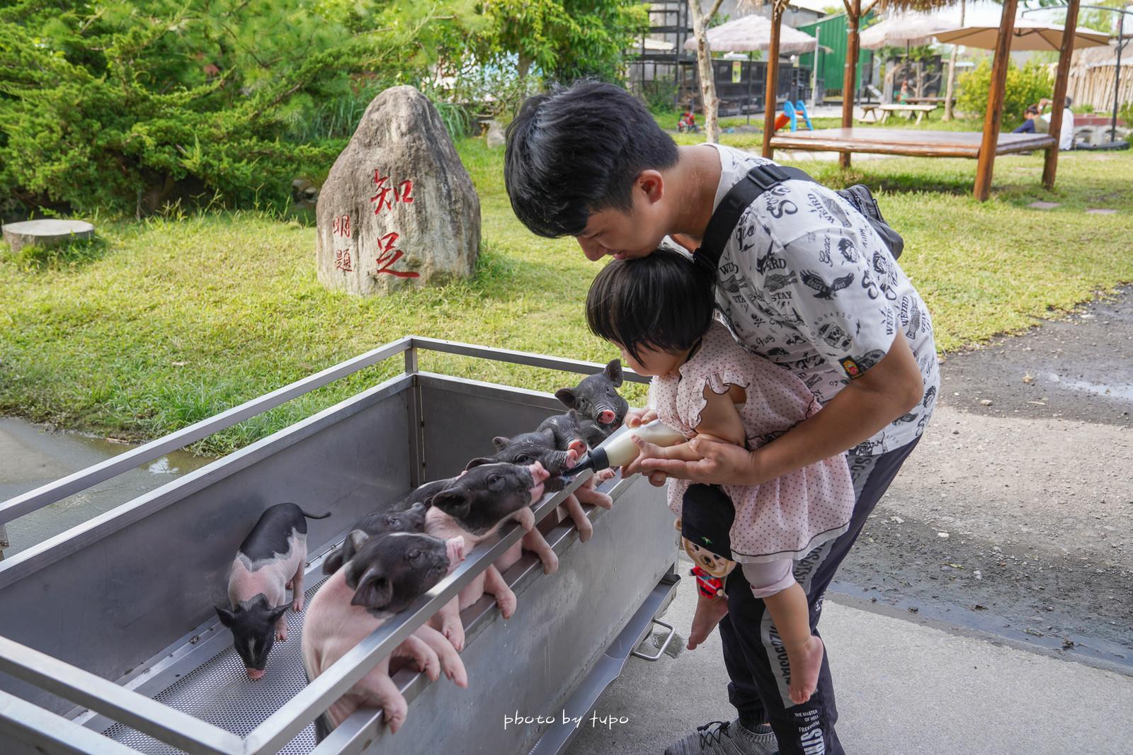 宜蘭冬山景點》心心農家樂 ~巴里島風玩水區摸蛤仔、玩沙、抱小豬豬、羊咩咩喝奶,超萌療癒系農場玩法!