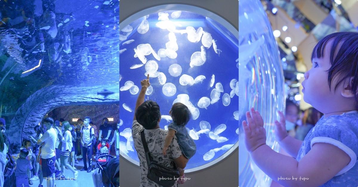 即時熱門文章:桃園青埔》陪企鵝吃飯,Xpark水族館 開園!讓小孩目不轉睛的海洋王國,大水族箱、生態秀、水母超吸晴!