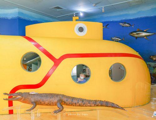 免門票 ‼ 搭上淺水艇深海探險去囉~積木遊戲區、多款益智玩具、閱讀區、適合三歲到八歲小朋友的秘密基地!