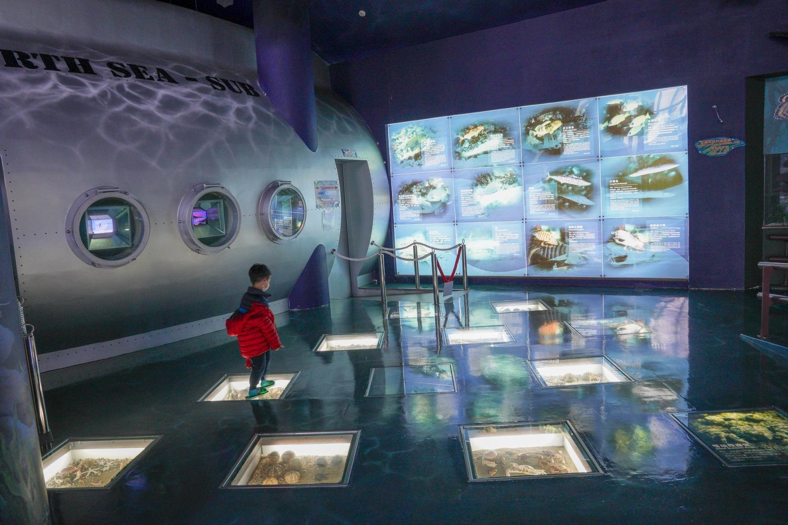 新北親子景點》北海岸遊憩探索館.白沙灣旁的隱藏室內景點,以北海岸為主題互動式場館