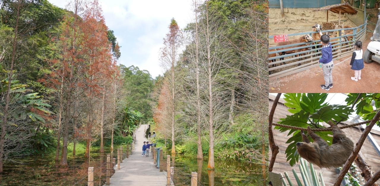 即時熱門文章:新竹親子景點》綠世界生態農・玩樂攻略,來大草皮野餐和可愛羊駝、鵜鶘、樹懶互動,門票優惠及園區地圖、北埔一日遊景點