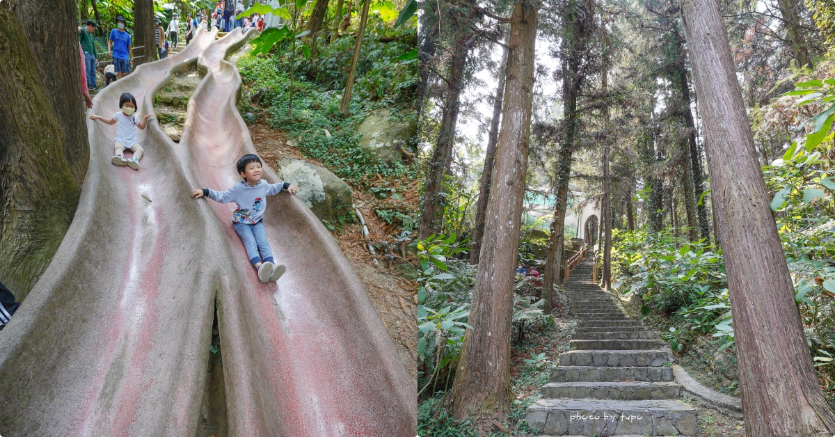今日熱門文章:南投鹿谷景點》鳳凰谷鳥園生態園區,銅板價門票!好好玩森林溜滑梯,賞鳥,瀑布半日遊,親近大自然的森林景點