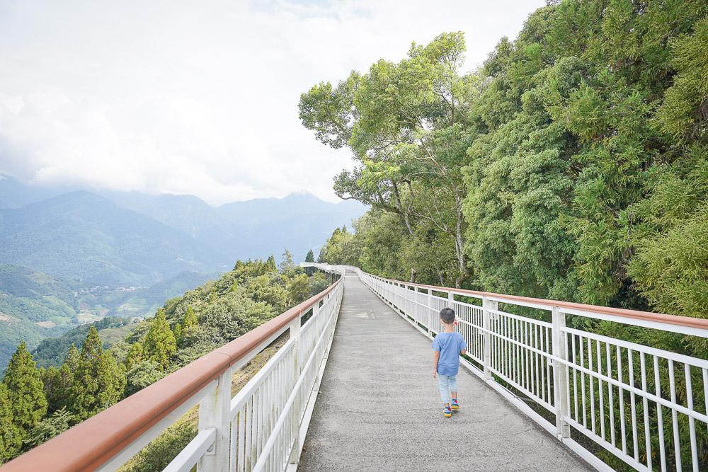 清境高空觀景步道》清境天空步道,銅板價門票免預約就可以在雲端上漫步,羊咩咩山坡,接駁車時間表